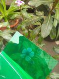 Vertiente sólida de la cría de la hoja del policarbonato verde e invernadero agrícola