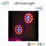 Großhandels-Preis Apollo-Serien LED wachsen für Handelsbearbeitung hell