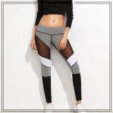 Qualitäts-Trainings-Kleidung für Frauen-Komprimierung-Yoga-Hosen