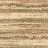 Telhas de assoalho do mármore da alta qualidade de Foshan (VRP8M117, 800X800mm)