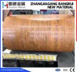 bobine en acier de la configuration 3D en bois extérieure