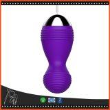 Da escova Vaginal impermeável remota sem fio recarregável da massagem da estimulação dos Labia do vibrador do USB vibrador flertando do ponto de G do ovo do salto