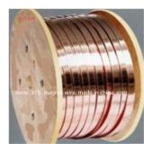 Hot Sell Copper Flat Wire