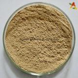Extraits de grains de café vert extraits d'acide chlorogénique naturel