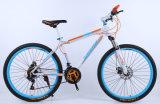 Bicicleta barata MTB da bicicleta de montanha da alta qualidade
