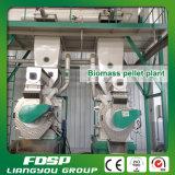 Linea di trasformazione della pallina di legno per la fabbricazione della pallina del combustibile biologico