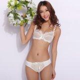 Sujetador cómodo transparente atractivo y Panty para las señoras (FPY322)