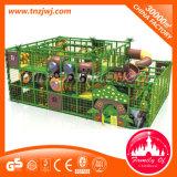 Het binnen Ongehoorzame Kasteel van de Gymnastiek van de Jonge geitjes van de Speelplaats van de Wildernis Plastic