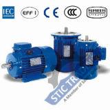 Motor de C.A. da eficiência elevada de ferro de molde Ie1 do IEC 8pole