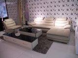 Sofá popular del cuero genuino de la sala de estar (SBL-9130)