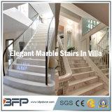 Scale di marmo bianche popolari/punto & colonna montante per il pavimento/interiore Upstair