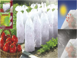 Protection Tomates 0, 65X10m 17G/M&sup2 de Housse ;