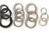 Rondelles de rondelle à ressort de la rondelle de freinage de moletage de côté de double d'acier inoxydable (DIN9250)