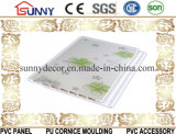 Comitato di parete caldo del Soffitto-PVC del PVC di vendita