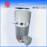 Vertical Hollow Shaft Electric Motor for Vertical Deep Well Turbine Pump