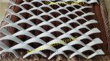 中国のProfessinalの工場製造によって拡大される金属の網