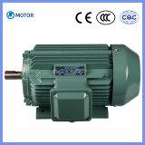 ~ elettrico a tre fasi 315kw di CA Motors0.75kw di alta qualità di serie di Yjt