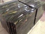 Brasil Cosmic Black Cosmos Negro Matrix Titanium Prada Gold Granito