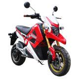 رياضة بالغ [1500و], [3000و] درّاجة ناريّة كهربائيّة