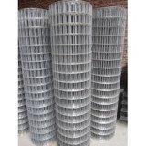 I campioni liberi hanno saldato la rete metallica di /Iron della rete metallica di /Steel della rete metallica