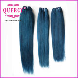 "8A Quercy Hair /Indian/Peruvian/Malaysian 100% Hair 8 "" - 32 "" #750 Blue Color Menschenhaar"