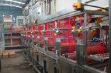 Cer-anerkanntes Nylongummiband nimmt kontinuierliche Dyeing&Finishing Maschine auf Band auf