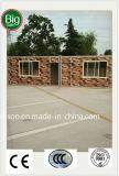 Casa móvil prefabricada/prefabricada de la fuente grande en diversos países