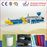 Extrudeuse de feuille en plastique