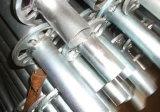 최신 Dipped Galvanized Ring Lock Scaffold 또는 Formwork Support Scaffolding