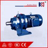 Cycloidal редуктор скорости с электрическим двигателем