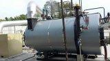 Caldaia a vapore infornata biomassa di industria