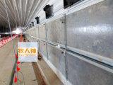 Portello d'isolamento termico per il pollo nella Camera del pollame