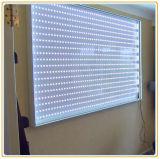 유행 A1 Frameless 직물 LED 가벼운 상자