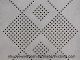 Perforiertes Metallineinander greifen für Filter-Grobfilter-dekoratives Ineinander greifen