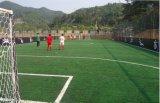 Gemakkelijke Installatie van het Gras van de Voetbal van twee Tonen de Kunstmatige
