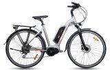 El tipo de la ciudad, Mediados de-Conduce la bici eléctrica del motor (TDB16Z)