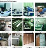 Cer Proved Highquality Pure Sine Wave Inverter 1000W~5000W Solar Inverter ISO-Factory