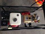 Pulvérisateur portatif de pouvoir d'engine d'essence avec le pouvoir grand pour l'irrigation d'Agricutural
