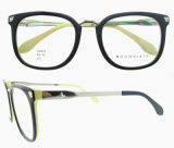 Lunettes flexibles de charnières de forme de femmes d'hommes de créateur de Plein-RIM populaire optique de Glassess