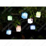 Im Freien SolarEdelweiss Zeichenkette-Leuchten LED-