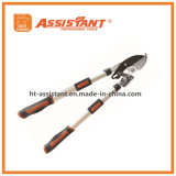 Razorsharp Heavy Duty Tulecopic Ratchet Anvil Loppers