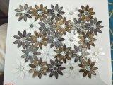 Mosaico de água doce da cor da tintura do escudo