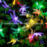 Luzes solares da corda da libélula