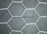 Hexagonal Wire Netting for Chicken Rabbit Dog Poultry clouded