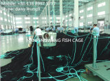 Jaula neta de los pescados de la piscicultura del HDPE