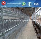 Cage de poulet de ferme de couche de l'Ouganda à vendre