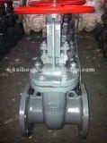 Válvula de puerta ensanchada (acero de molde o acero inoxidable)