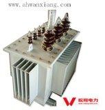 De in olie ondergedompelde 10kv Transformator van de Stroom transformer/S11-M