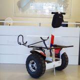 Uno mismo del equipo de golf del precio de fábrica que balancea el carro de golf eléctrico de la rueda de la vespa 2