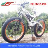 Montaña gorda Ebike, nieve Ebike del neumático del fabricante 48V